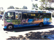 Mornington Bus