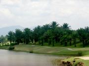 palmvilla2