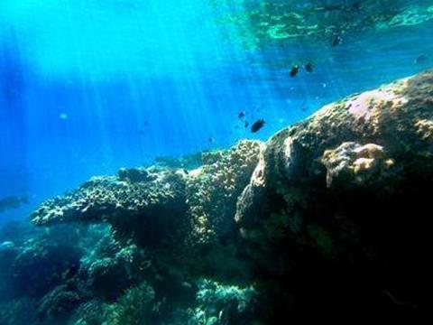 レンボンガン島・ペニダ島