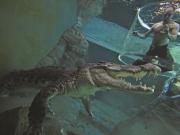 CODMan_underwater_OldCage