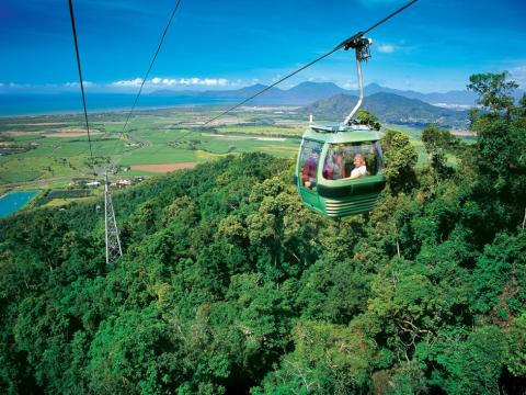 キュランダ/世界遺産の熱帯雨林