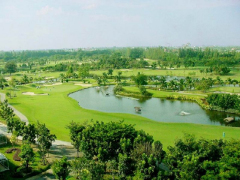 Golfview02