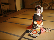 Costumed maiko kneeling on tatami mats