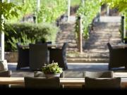 ケンゾーのテラス席には目の前にワイン畑が広がる