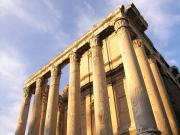 Roma Forum  (2)