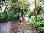 waipio_photo_horseride_kawa