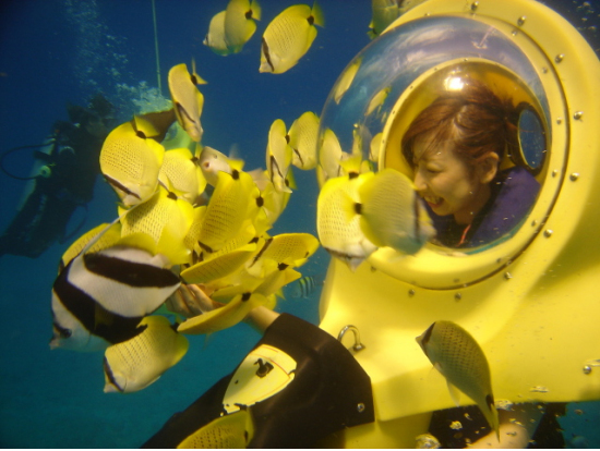 BOB's Underwater Scooter Adventure, Oahu ...