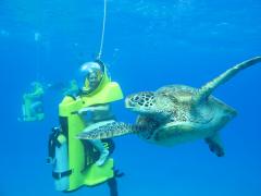 水中スクーター&ハワイカイサンドバー 半日送迎付きツアー シュノーケリング&スタンドアップパドルボートも楽しめる!