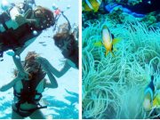 Snorkeling over coral reefs in the Keramas