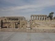 LXR ルクソール神殿4