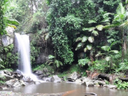 Tamborine Waterfall