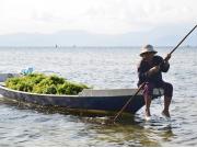 WakaSailing Private Charter - Mangrove Tour 3