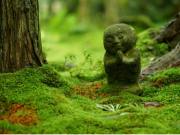 A mossy statue in an Ohara temple