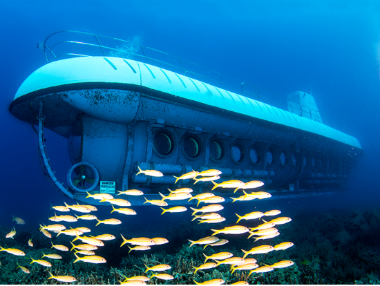 Kona atlantis submarine undersea expedition big island for Bottom fishing oahu