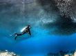 Scuba Diving (7)