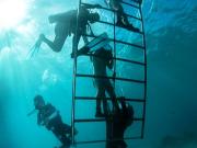 Helmet Diving (7)
