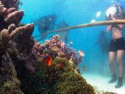 Helmet Diving (4)