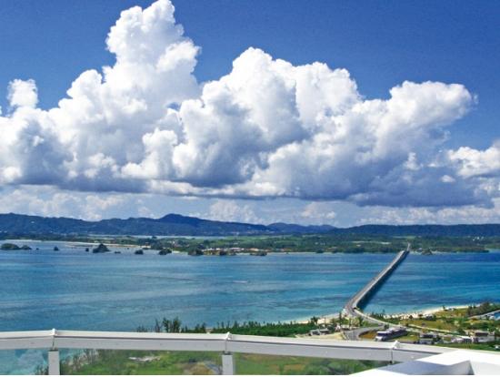 Northern Okinawa Bus Tour  Day