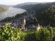 ライン川と古城ワイナリー2