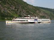 ライン川と古城ワイナリー4