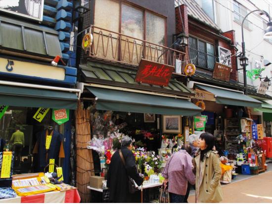 tokyo private tour guide english