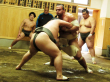 Sumo wrestlers at morning practice in Tokyo