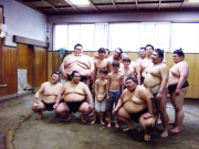 visit a sumo training stable