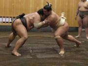 Tokyo sumo wrestling tour