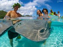 shark-and-ray-meeting (2)