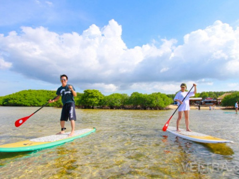 lembongan_mangrove-30