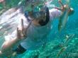 lembongan_mangrove-09