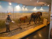 10【ばんえい】馬の資料館(内部①)