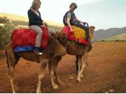 Atlas Camel Trek3-001