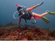 海で体験ダイビング01