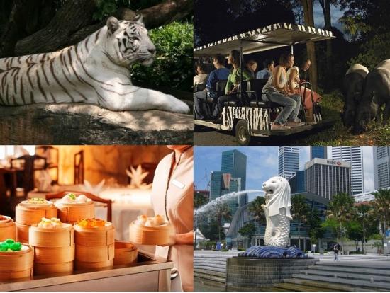 シンガポール,観光,オプショナルツアー,現地