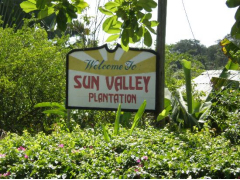 SunVallay+plantation+entrance