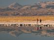 Atacama Salt Flat & Toconao (3)