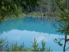 Blue Pond in Biei