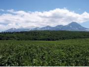 一日コース:フレペ草原