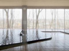 24 丸美ケ丘温泉 浴室