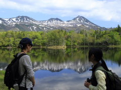 知床五湖・活動期:ガイドの様子