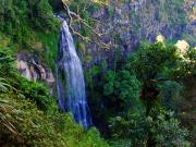 Morans Falls (6)