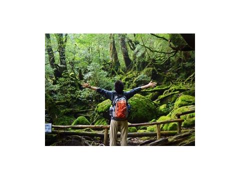 白谷雲水峡と太鼓岩03