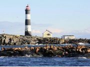 Race-Rocks-Lighthouse-built-in-1860-is-a-popular-sea-lion-hang-out-photo-Valerie-Shore-900x500