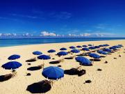 メイン画像はての浜プラン)はての浜パラソル
