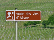 alsace_half_day_private_wine_tour_m_1