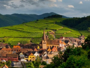 alsace_half_day_private_wine_tour_m_2