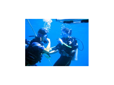ボート体験ダイビング10