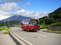 定期観光バスと桜島