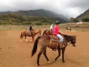 horsemanship lesson